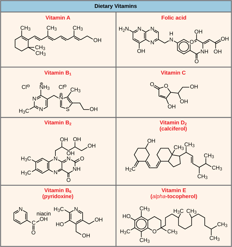 Shown are the molecular structures for Vitamin A, folic acid, Vitamin B1, Vitamin C, Vitamin B2, Vitamin D2, Vitamin B6, and Vitamin E.