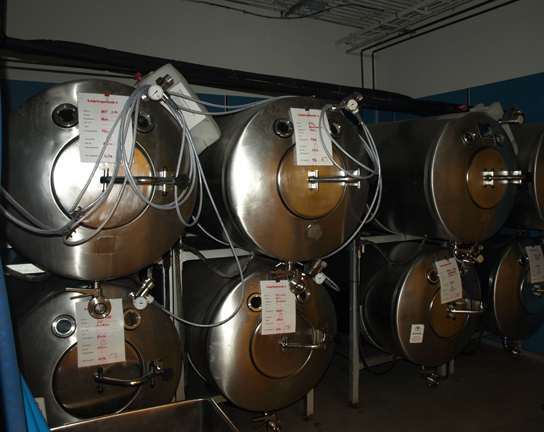 This photo shows large cylindrical fermentation tanks stacked one on top of the other.