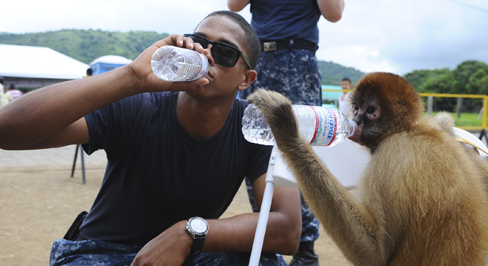 A photograph shows a person drinking from a water bottle, and a monkey next to the person drinking water from a bottle in the same manner.