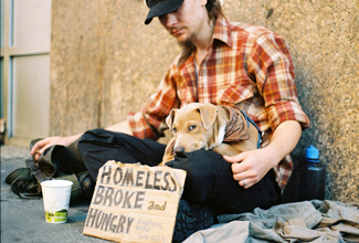 "A photograph shows a homeless person and a dog sitting on a sidewalk with a sign reading, ""homeless, broke, and hungry."""