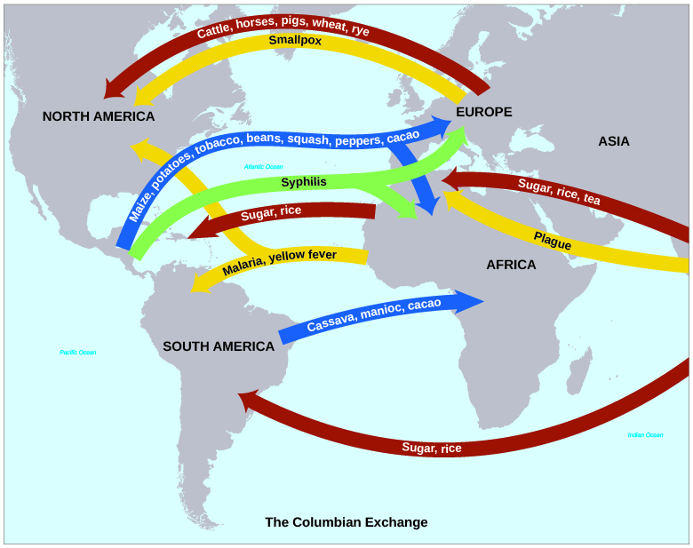 """A map shows the """"Columbian Exchange"""" of goods and diseases. Goods include crops such as maize, potatoes, tobacco, beans, squash, peppers, cacao, cassava, and manioc traveling east as well as rye, wheat, rice, sugar, and tea traveling west. Animals such as cattle, horses, and pigs traveled westward. Diseases include syphilis, malaria, smallpox, yellow fever, and plague."""