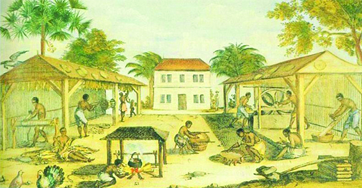 This is a 1670 painting showing bare-chested, barefoot black men in knee-length pants, doing various tasks associated with tobacco drying. Some stand in sheds hanging the leaves up to dry.