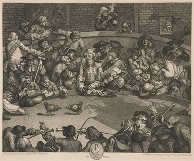 An engraving shows an unruly crowd watching a cockfight and betting on the results.