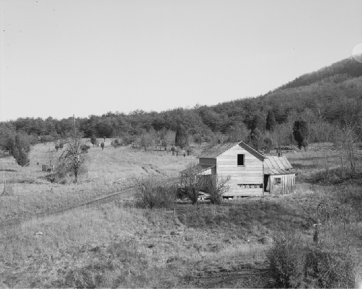 An image of a small house surrounded by a field and several trees.