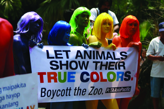"""An image of a group of six people, each one painted a different color, holding a sign that reads """"Let animals show their true colors. Boycott the zoo. Peta Asia Pacific.""""."""