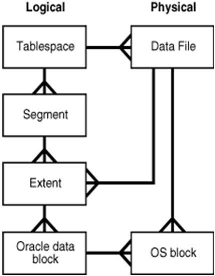Data warehouse Design Using Oracle | Unit 4 Partition | OER