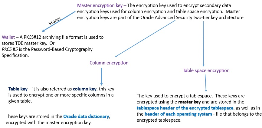 Database Security | Unit 8 Encryption and Wallet | OER Commons