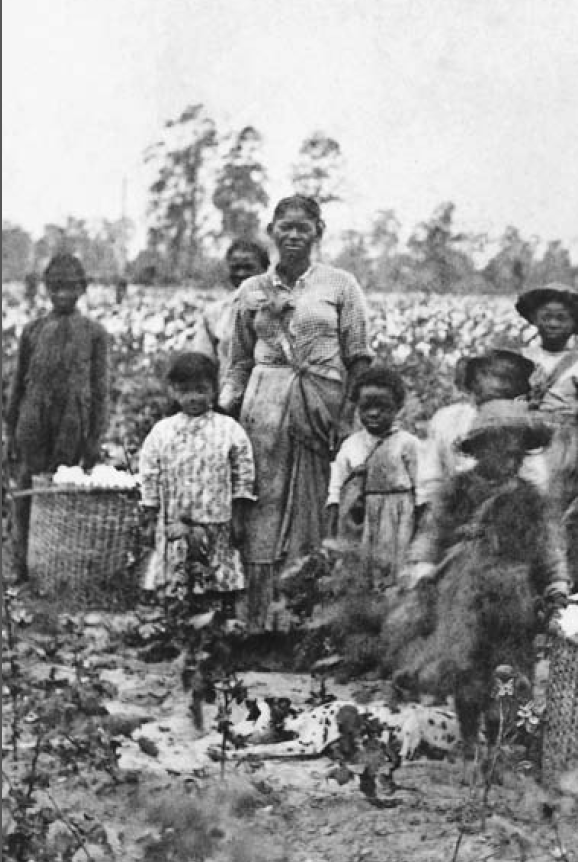 A slave family standing next to baskets of recently-picked cotton near Savannah, Georgia in the 1860s.