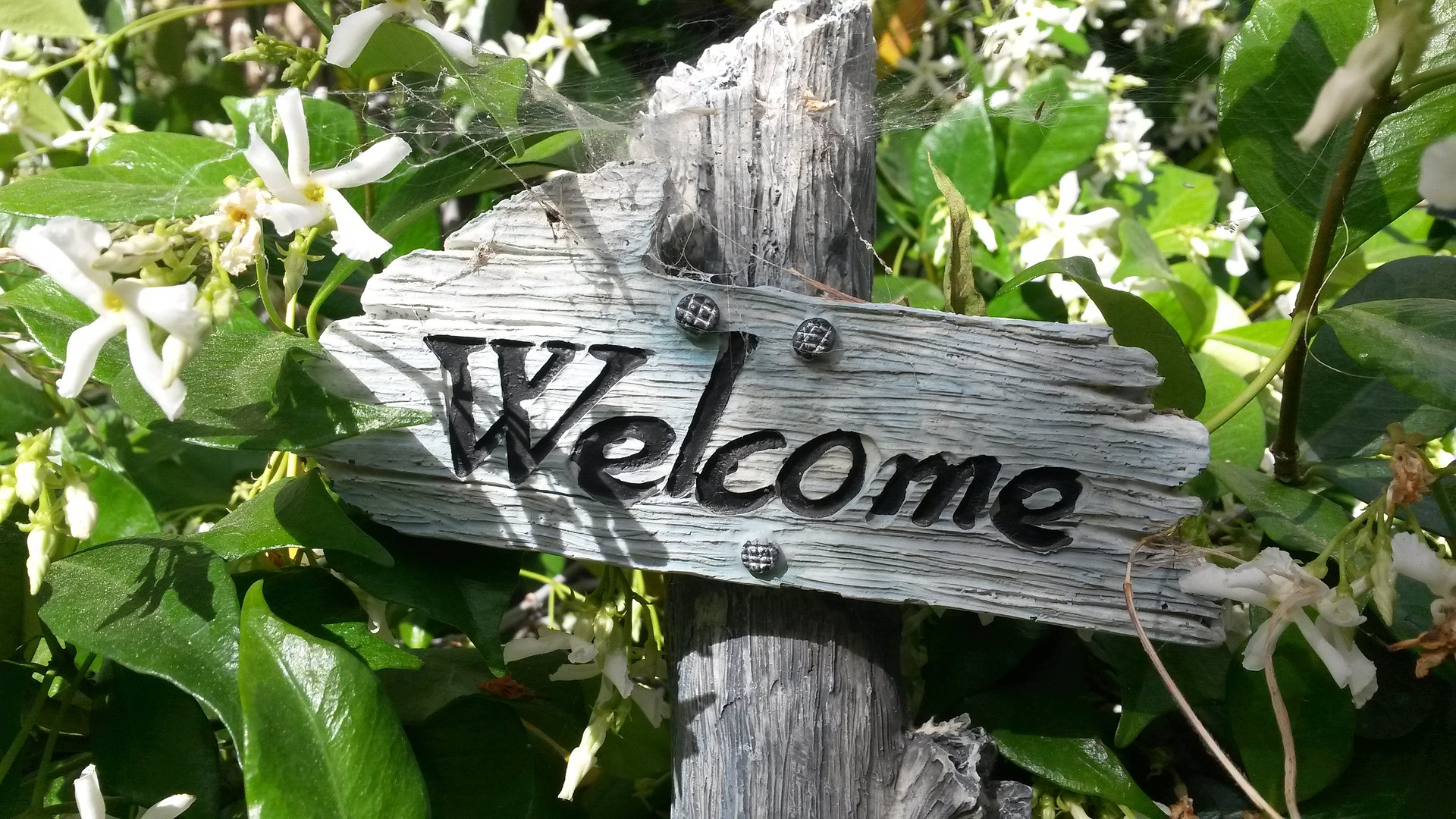 Wooden welcome sign in a garden