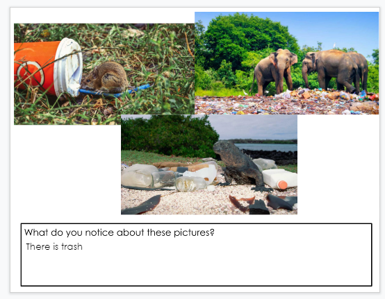 A second screenshot of author, M.Moore's student responses to noticings about trash in Google Slides