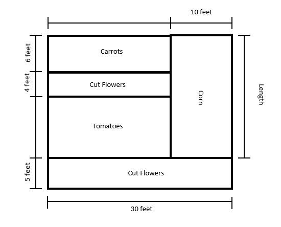 A rectangular garden divided into five different sections to show where Madison is going to plant each of her items.