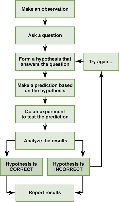Figure 1.6. The scientific method consists of a series of well-defined steps. If a hypothesis is not supported by experimental data, a new hypothesis can be proposed.