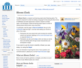 Bloom Clock Project