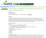What Factors Influence How Efficiently the Work of a Cell is Carried Out