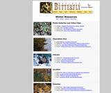 Seasonal Migrations: Monarch Butterflies
