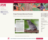 Project Formats: Electronic Formats