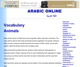 Vocabulary Words: Animals and Insects