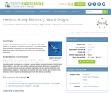 Biomimicry: Natural Designs