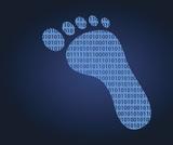 Shaping our Digital Footprint
