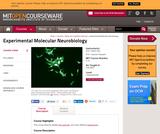 Experimental Molecular Neurobiology, Fall 2006