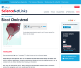 Blood Cholesterol
