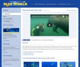 Swimming with Sea Cows: Manatees