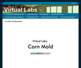 Virtual Labs: Testing for Corn Mold