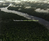 CFR InfoGuide: Deforestation in the Amazon
