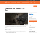 Video: The Living Soil Beneath Our Feet