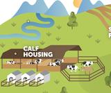 Virtual Farm Tour and Lesson Plan with Dairy Farmers of Washington