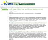 Leaf Walk: Observing and Investigating Leaves