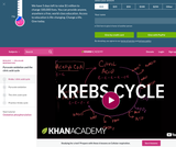 Biology: Krebs / Citric Acid Cycle