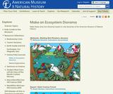 Field Journal: Dioramas