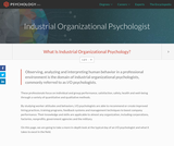 Industrial Organizational Psychologist