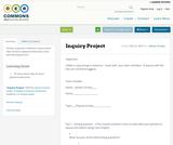 Inquiry Project