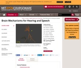 Brain Mechanisms for Hearing and Speech, Fall 2005