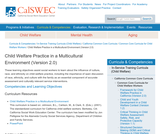 Child Welfare Practice in a Multicultural Environment (Version 2.0)