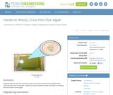 Grow Your Own Algae!