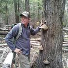 Jim Johnson's profile image