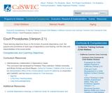 Court Procedures (Version 2.1)