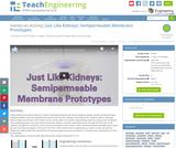 Just Like Kidneys: Semipermeable Membrane Prototypes