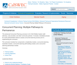 Concurrent Planning: Multiple Pathways to Permanence