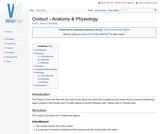 Oviduct - Anatomy & Physiology