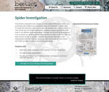 Spider Investigation