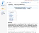 Forebrain - Anatomy & Physiology