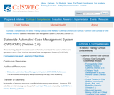 Statewide Automated Case Management System (CWS/CMS) (Version 2.0)