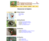 Seasonal Migrations: Hummingbird