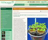 Growing Rapid Brassica rapa (RBR) in a Discovery Cup System (DCS)