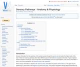 Sensory Pathways - Anatomy & Physiology