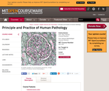 Principle and Practice of Human Pathology, Spring 2003